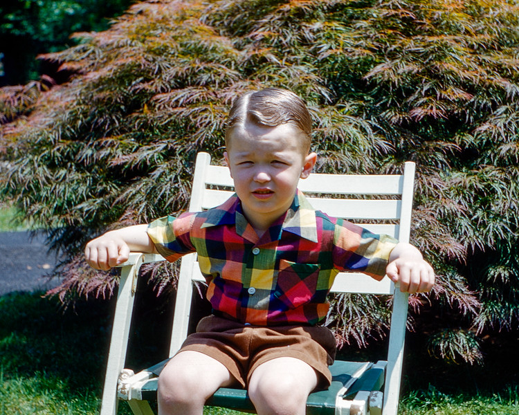 Greg by the Lace Leaf maple - June 1952