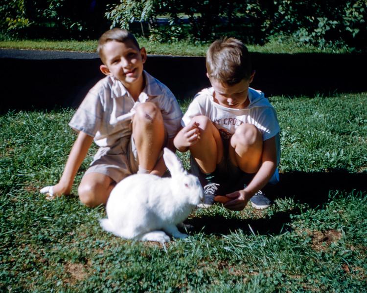 Sonny & Greg feeding Hoppie  - September 1955