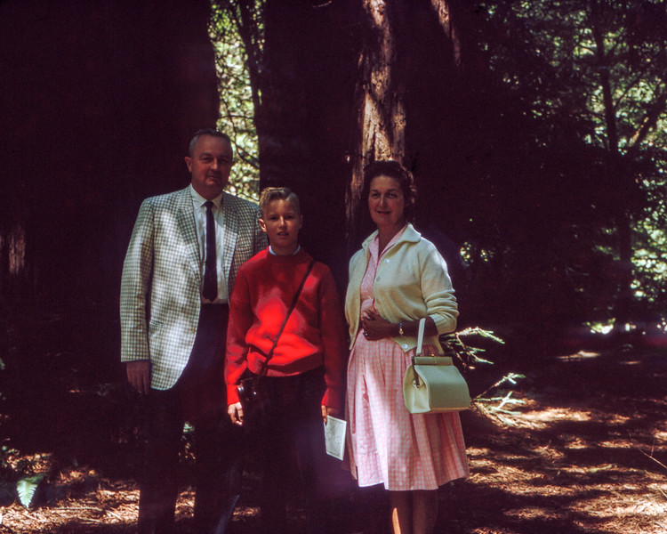 Muir Woods - Dad, Barry & Mom (AF) - 1964