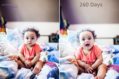 260days-Ayla-comp-Edit