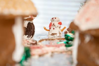 20181230-Christmas Village-Dec 2018_009