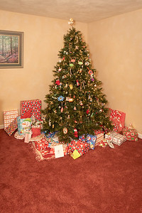 20181225-Christmas Tree (2)-Dec 2018