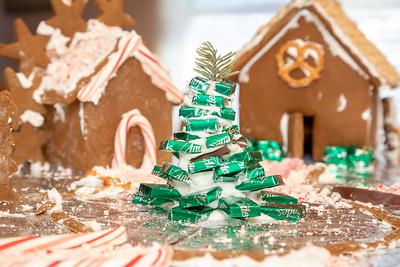 20181230-Christmas Village-Dec 2018_004