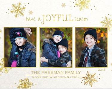 Freeman holiday 2013