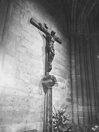 Europe Trip-Aug 2017 (Notre Dame 2)