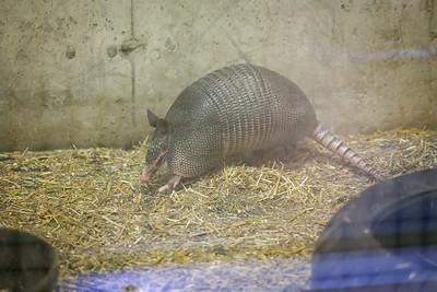 Si-Sept 2021 (Cosley Zoo)-023