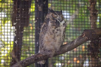 Si-Sept 2021 (Cosley Zoo)-013