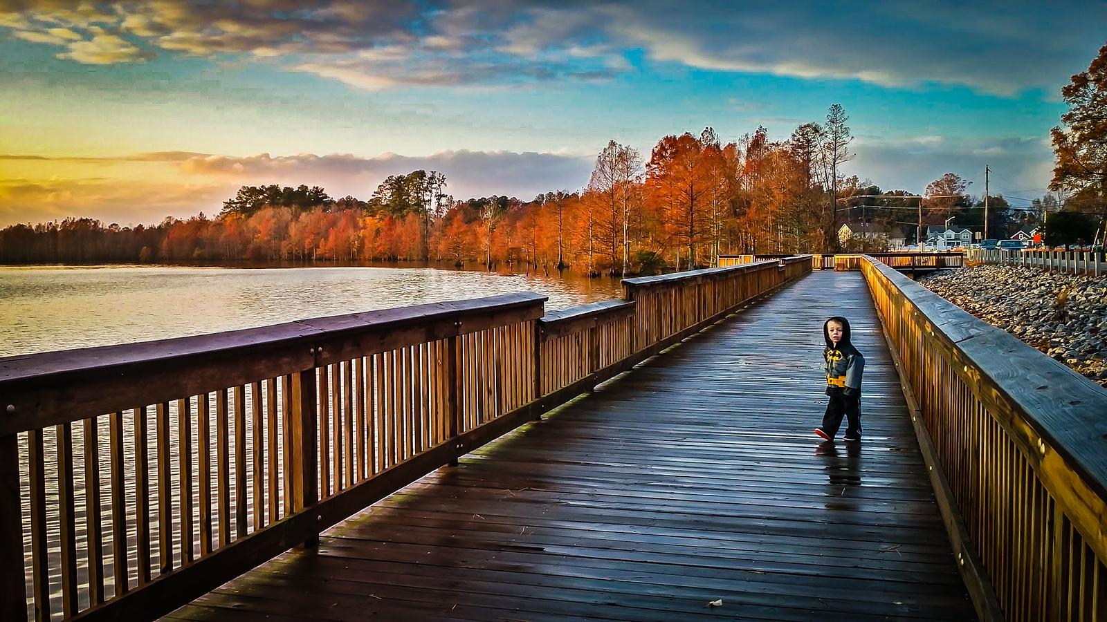 Lake Stumpy Walk