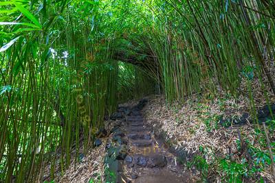 2017 Road To Hana-Maui
