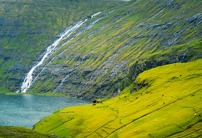 Green and Wet, Faroe Islands in summer.  I just read the Faroes are closed to nonresidents due to COVID.  Hope to visit again in a year or two, this ancient land will still be here.
