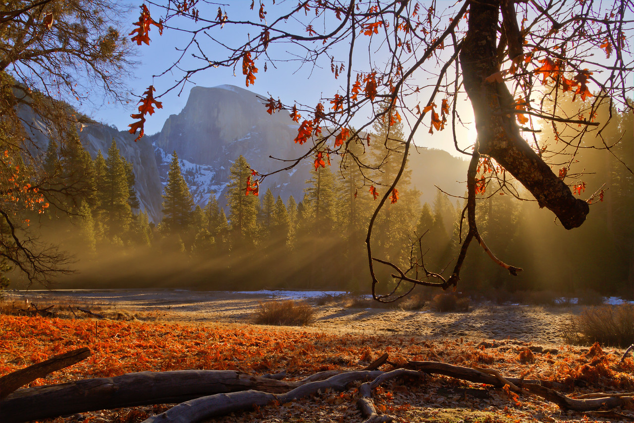 Morning mist in Yosemite