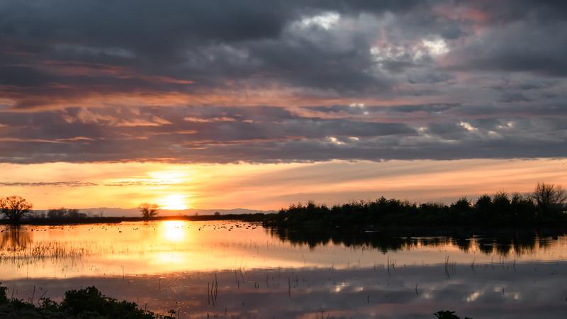 Merced NWR Sunrise - Landscape