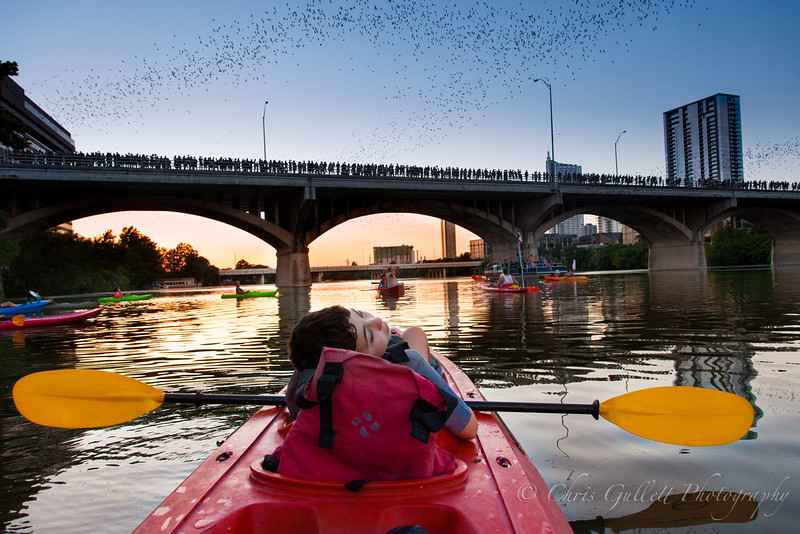 2 MILLION BATS OVER TOWN LAKE AUSTIN