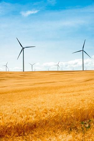 Windmills 005 | Wall Art Resource