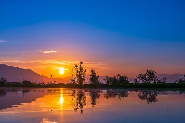 Lake Kerkini @ Serres, Greece
