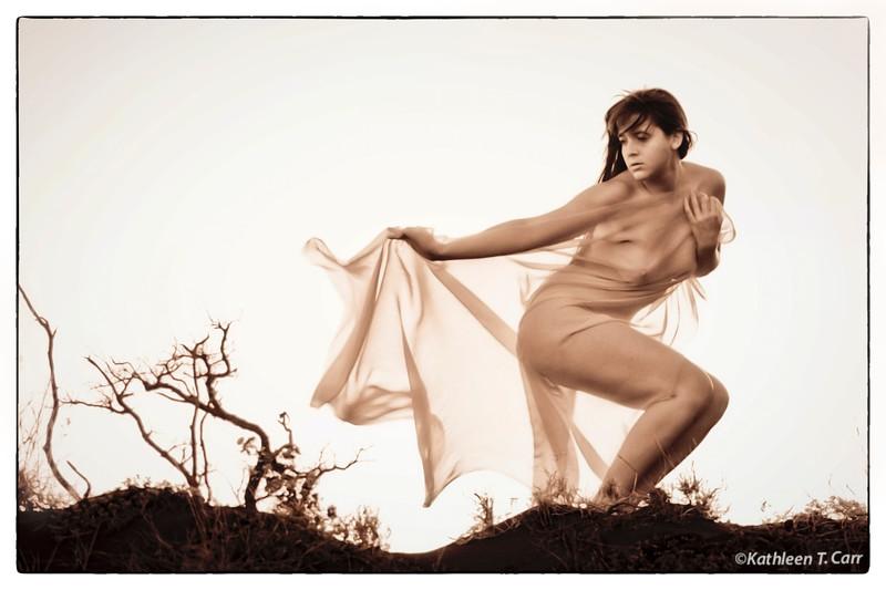 Wind Dancer #6