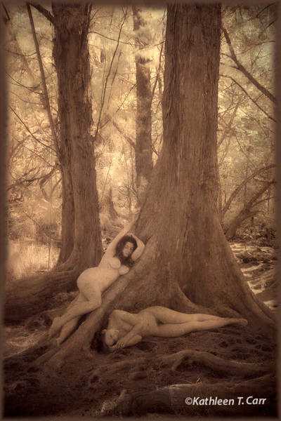 Nudes in Tree
