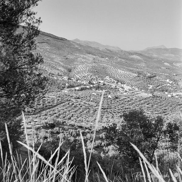 Sabariego