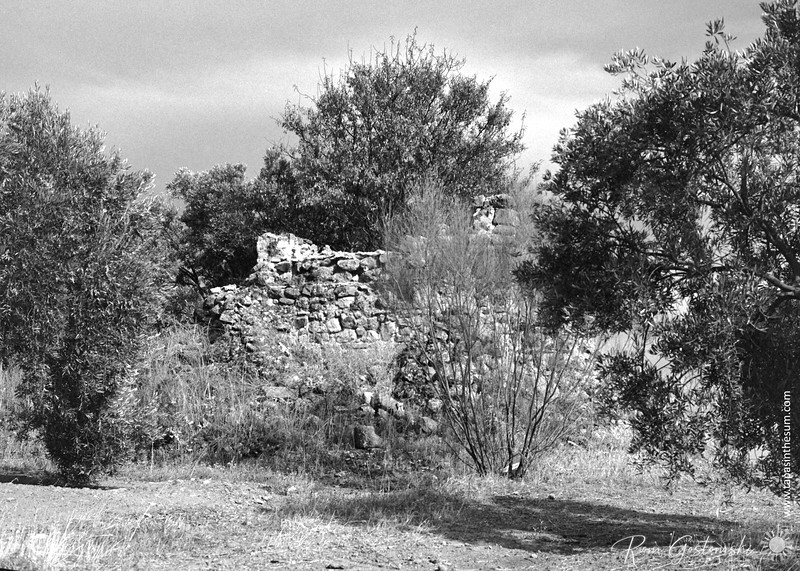 Old abandoned cortijo