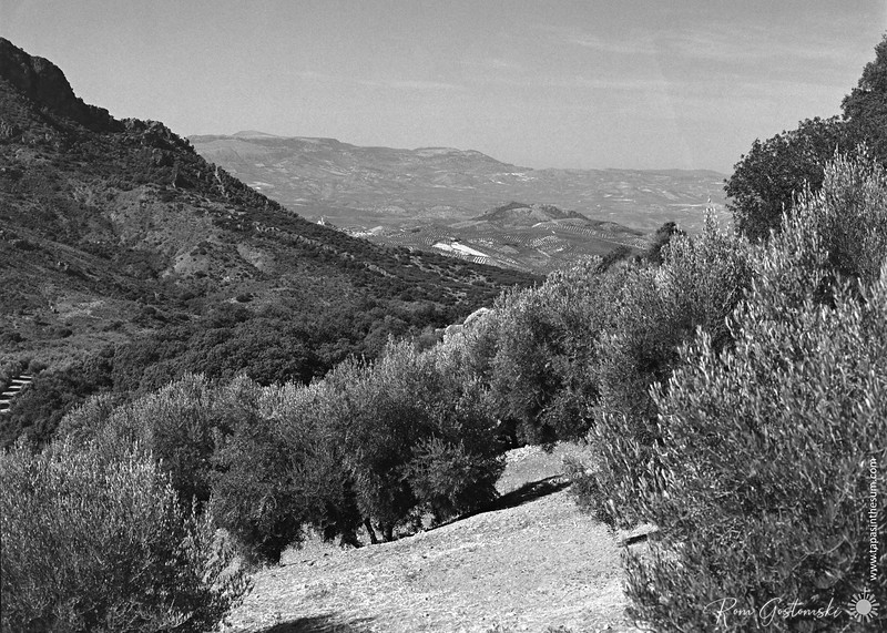 Sierra Caracolera  - Alcaudete in the background