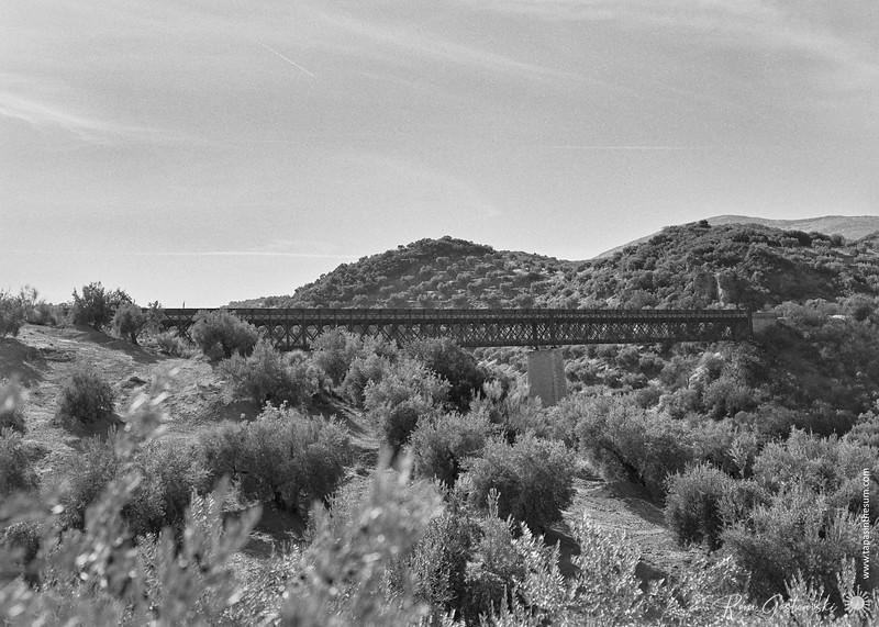 Vía verde del aceite - viaducto sobre el arroyo del higueral