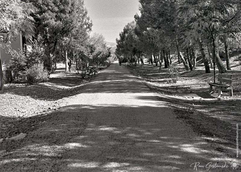 Via Verde del Aceite - near Estación Vado Jaén