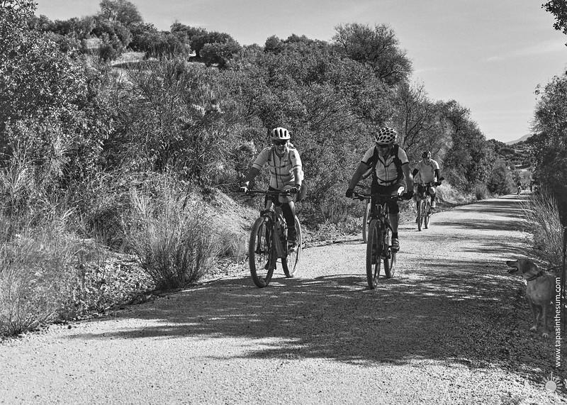 Cyclists on the Via Verde