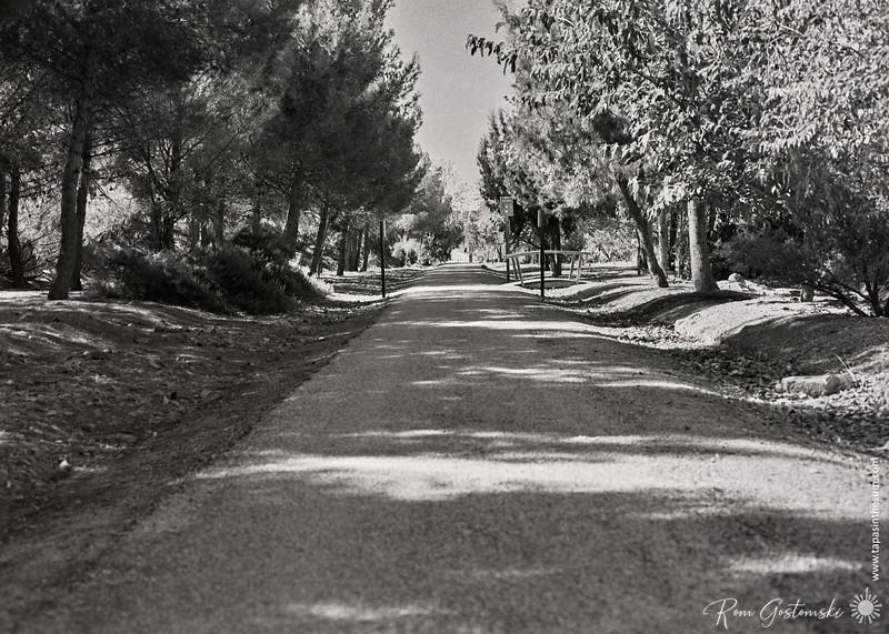 Via Verde del Aceite near Estación Vado Jaén
