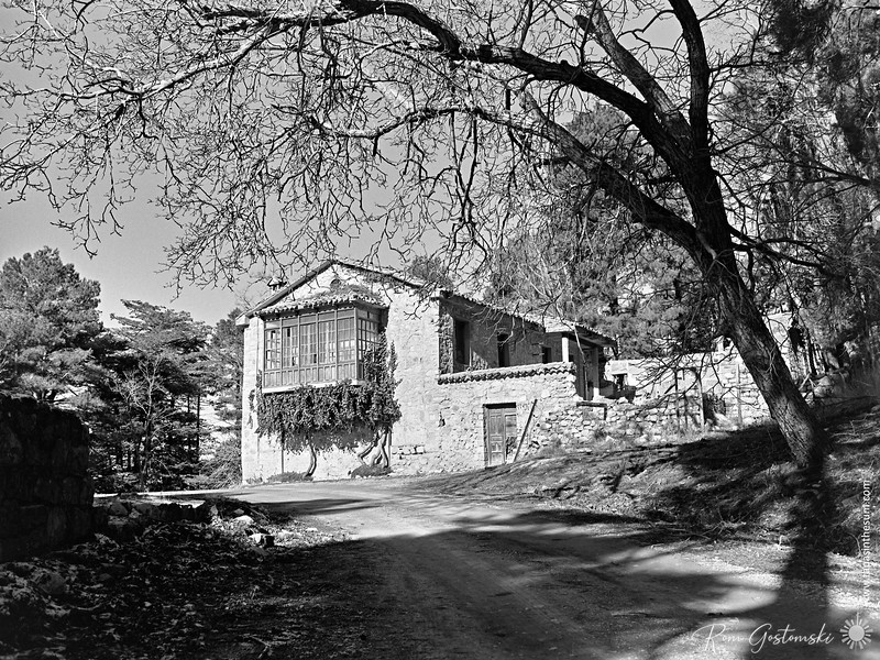 Abandoned house in the forest, El Chorro, near Cazorla