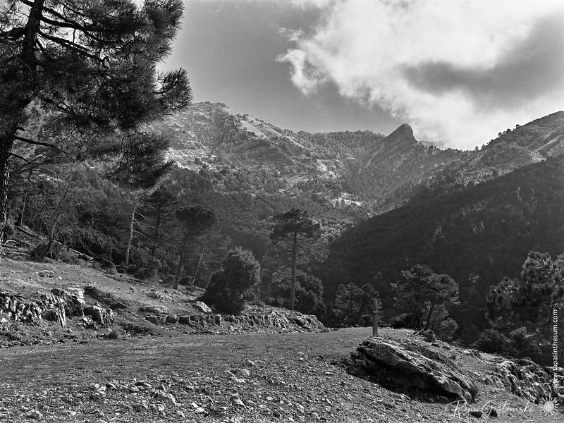 Winter's day - El Chorro near Cazorla