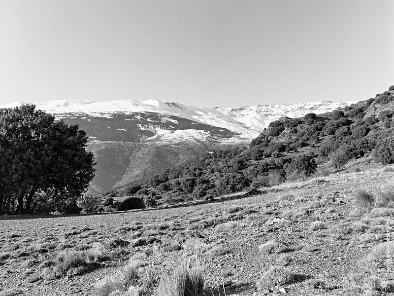 Snow capped mountains - Sierra Nevada