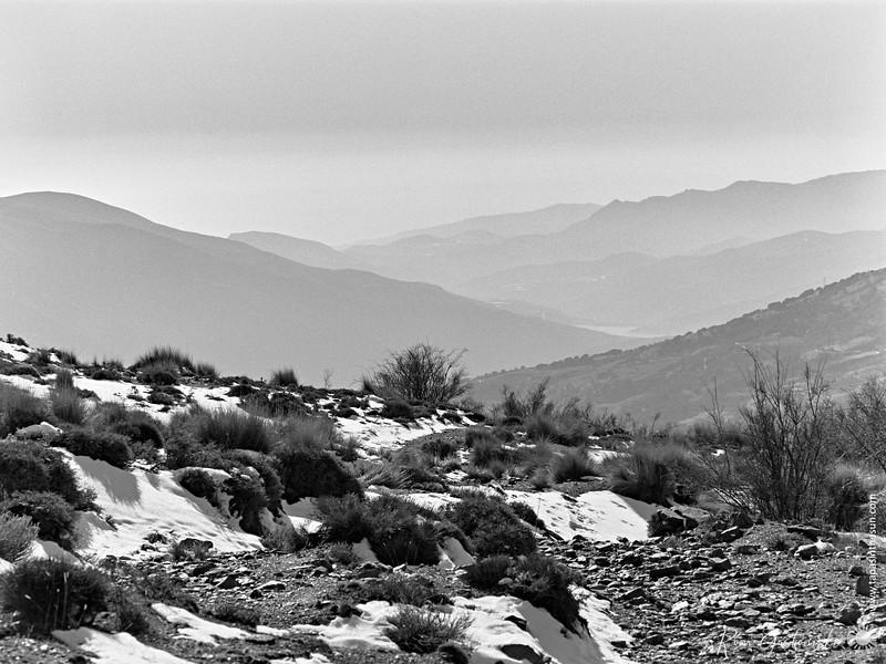 A misty Sierra Nevada