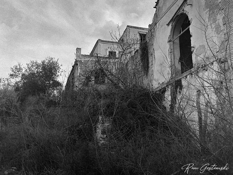 Around the back of an abandoned cortijo