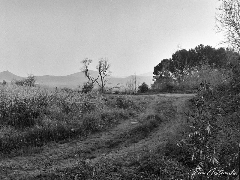 Farmer's track