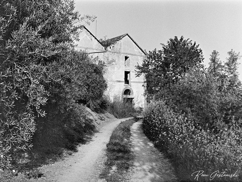 Access track to the abandoned cortijo