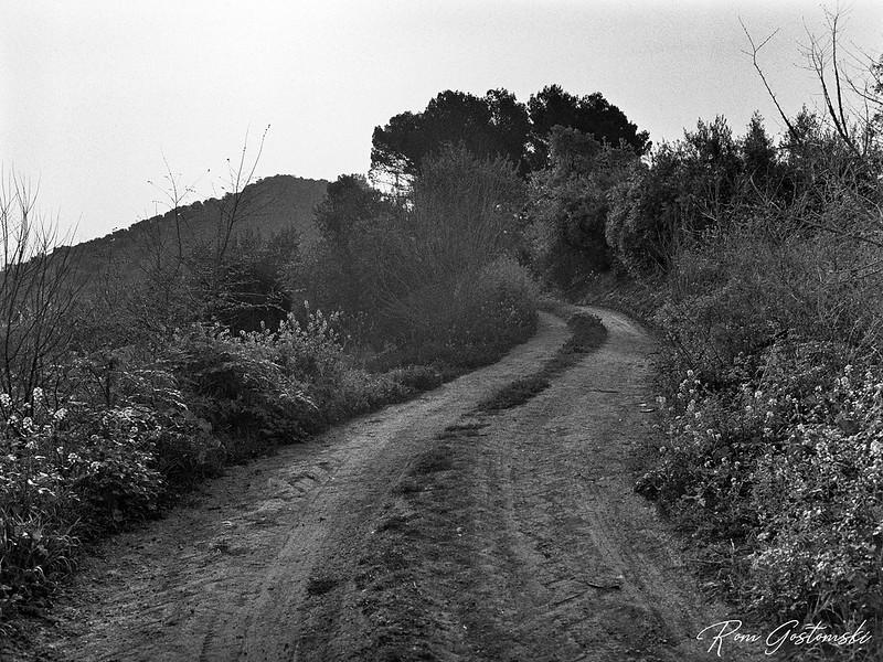 Farm access track