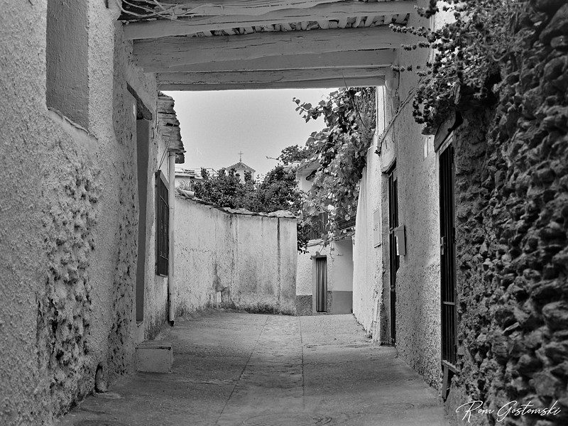 A narrow street in Ferreirola with tinao