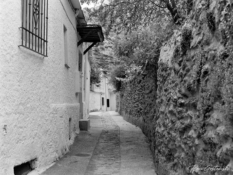 Narrow street in Ferreirola