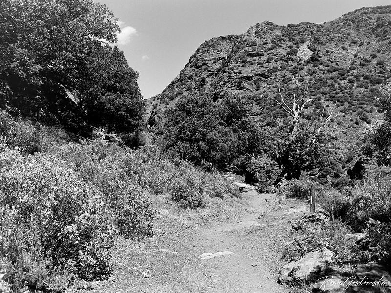 Back on the trail near Ferreirola
