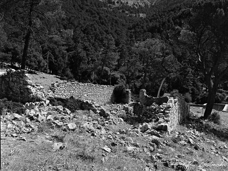 Ruins of an abandoned cortijo