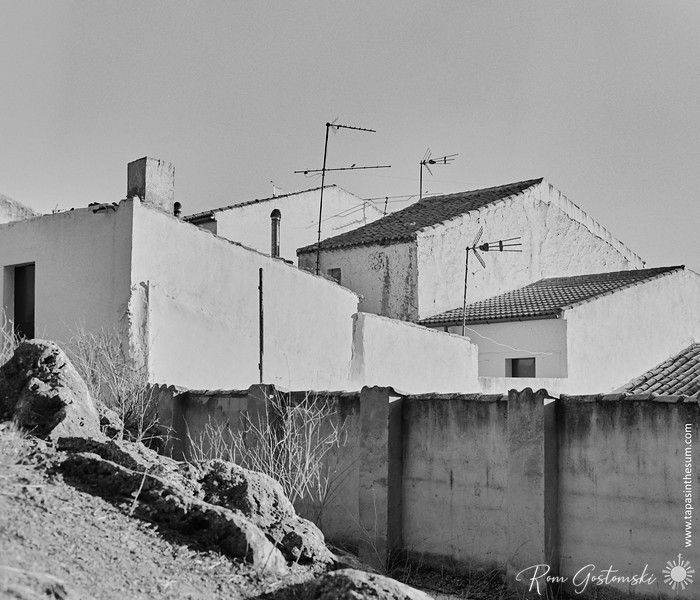 The backs of white houses