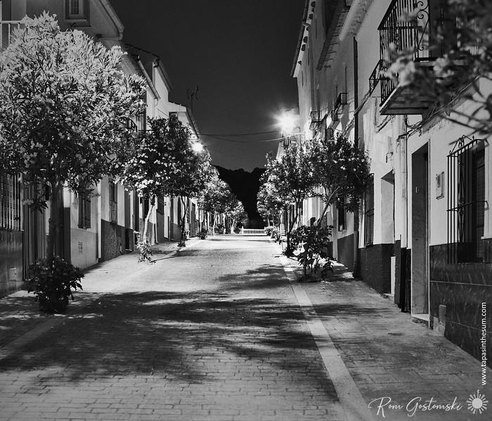 Village street at night