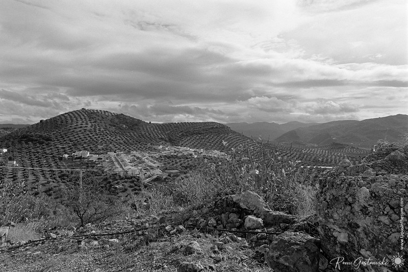 The view from the abandoned cortijo