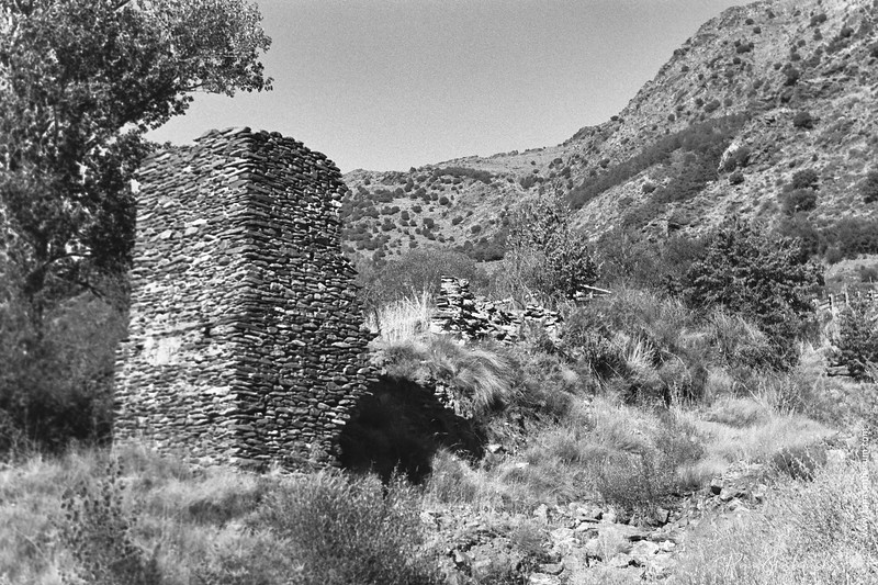 The old ruin