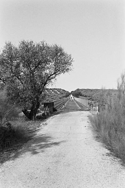 Viaducto Sobre el Arroyo del Higueral on the via verde