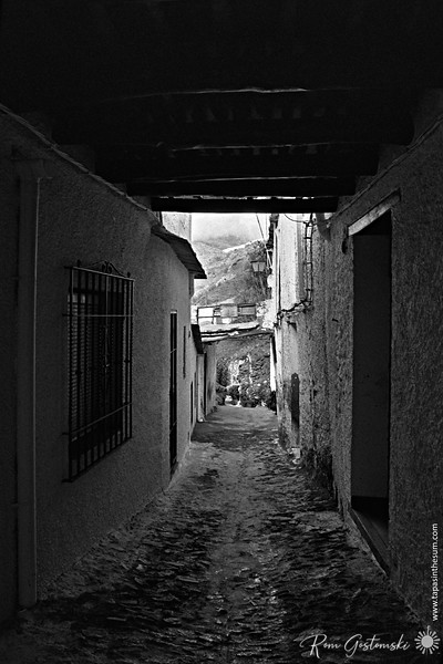 The narrow streets of Pampaneira - under the tinao