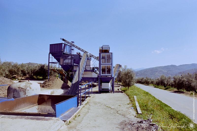 Olive segregating machine