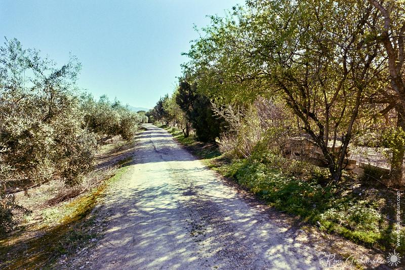 Farmer's track next to the Via Verde