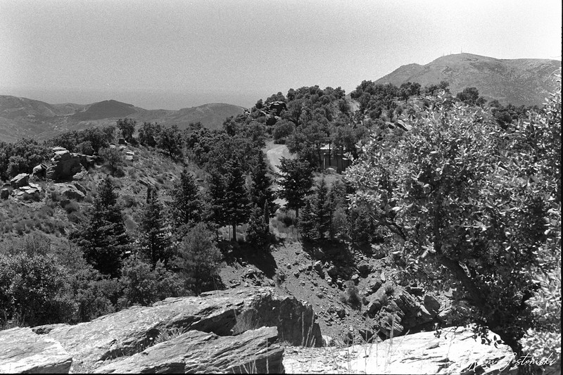 Rocks, trees and mountains