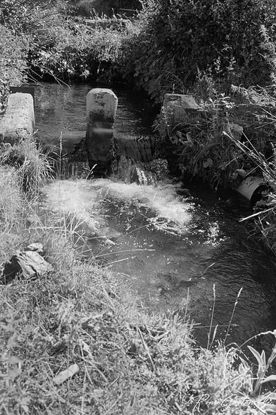 An acequia (irrigation ditch)